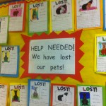 Our lost pet posters