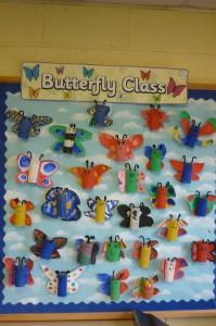 butterfly 3rd class 063