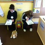 Filling out pet information
