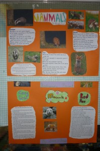 biodiversity projects 3rd class 004